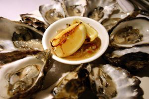 205239_oysters-cambiar