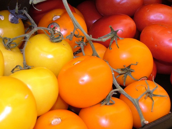 796px-Colorful_Red_and_Yellow_Tomatoes_2816px